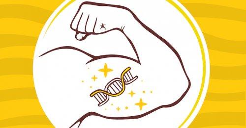 Genes & 'trainability'